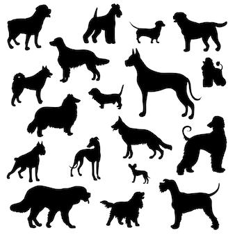 Zestaw z czarnymi sylwetkami różnych ras psów