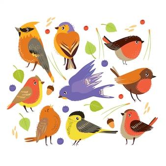 Zestaw z ptakami i elementami roślin leśnych. jesienny czas.