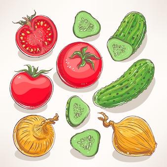 Zestaw z ręcznie rysowanymi warzywami. pomidory, ogórki, cebula