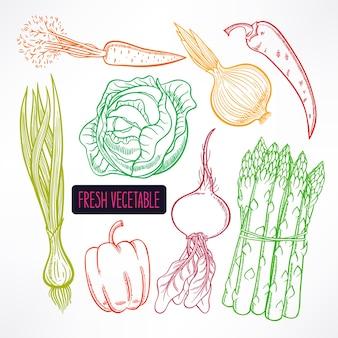 Zestaw z różnymi kolorowymi warzywami jesienią