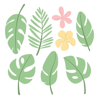 Zestaw z różnymi tropikalnymi liśćmi i kwiatami