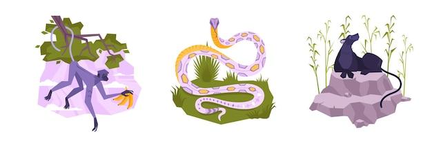 Zestaw z trzema izolowanymi kompozycjami płaskich tropikalnych roślin i zwierząt