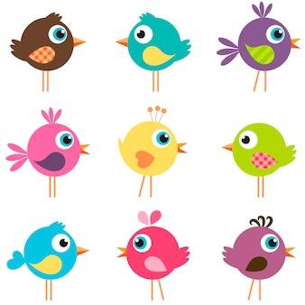 Zestaw zabawnych kolorowych ptaków