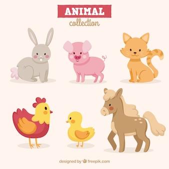 Zestaw zabawnych zwierząt o płaskim wzornictwie