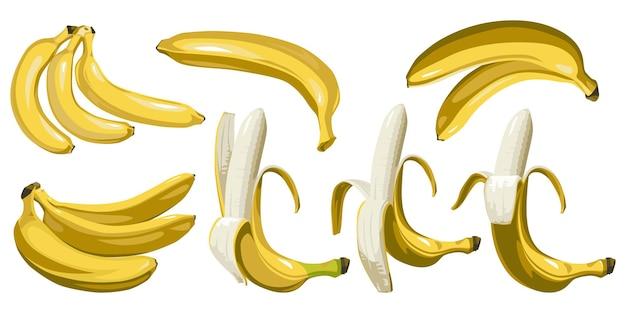 Zestaw zamkniętych i odkrytych bananów