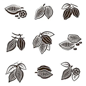 Zestaw ziaren kakaowych