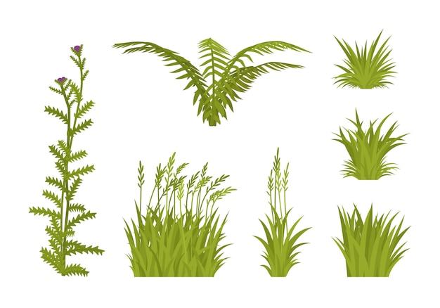 Zestaw zielonej trawy