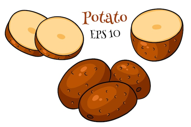 Zestaw ziemniaków. całe ziemniaki, pokrojone w kliny, połówki. w stylu kreskówkowym. ilustracja wektorowa do projektowania i dekoracji.