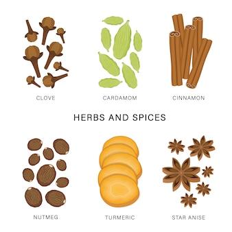 Zestaw ziół i przypraw. organicznie i zdrowa żywność odizolowywał element ilustrację.