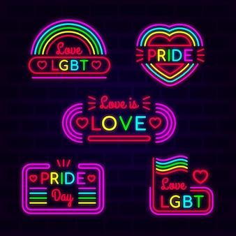 Zestaw znak neon dzień dumy