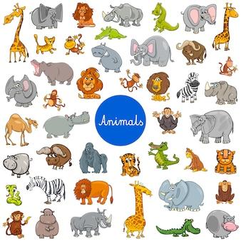 Zestaw znaków dzikich zwierząt duży zestaw