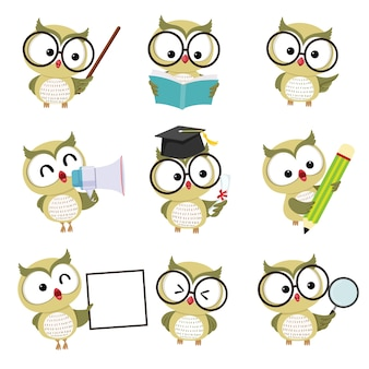Zestaw znaków maskotki sowa w różnych pozach