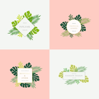 Zestaw znaków mody tropikalnych liści monstera lub szablonów logo.