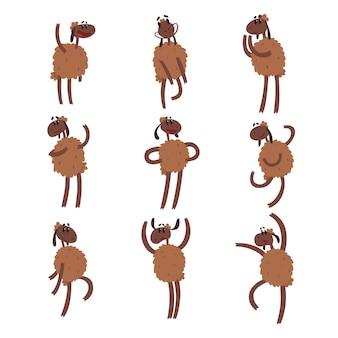 Zestaw znaków owiec śmieszne kreskówki, brązowe owce z różnymi emocjami kolorowe ilustracje na białym tle