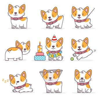 Zestaw znaków psa kreskówka corgi. śmieszne małe szczenięta na białym tle na białym tle.