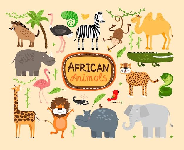 Zestaw zwierząt afrykańskich. lampart i lew drapieżników. słoń i hipopotam, żyrafa i wielbłąd