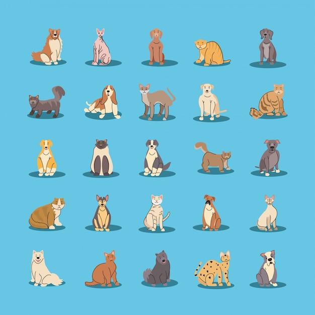 Zestaw zwierząt domowych, różnych ras psów i kotów