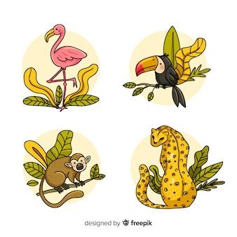 Zestaw zwierząt dżungli: flaming, tukan, małpa, lampart