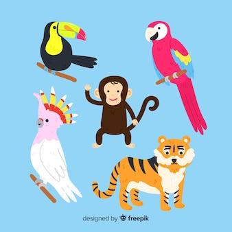 Zestaw zwierząt dżungli: tukan, papuga, małpa, tygrys