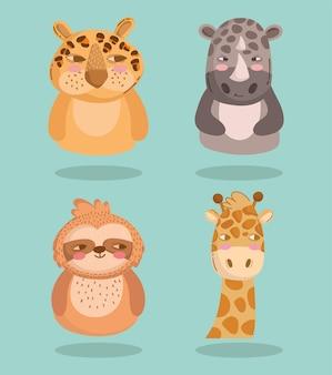 Zestaw zwierząt fauny