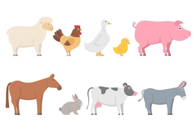 Zestaw zwierząt gospodarskich i ptaków w modnym stylu płaski. zbiór postaci z kreskówek na białym tle. owca, koza, krowa, osioł, koń, świnia, kot, pies, kaczka, gęś, kurczak, kogut.