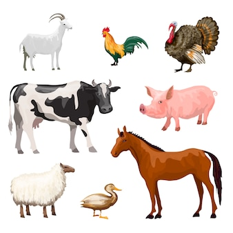Zestaw zwierząt gospodarskich
