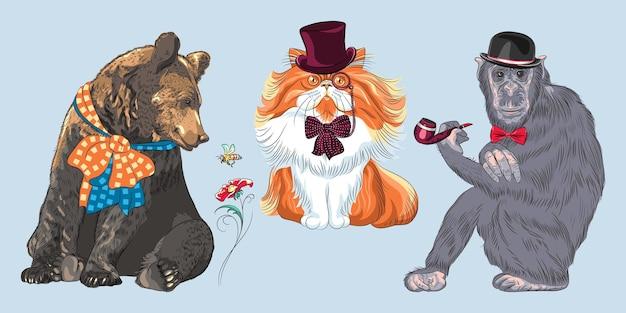 Zestaw zwierząt hipster. małpa w meloniku i muszce z fajką, miś z kokardą, czerwony puszysty kot perski w kapeluszu, okularach i muszce
