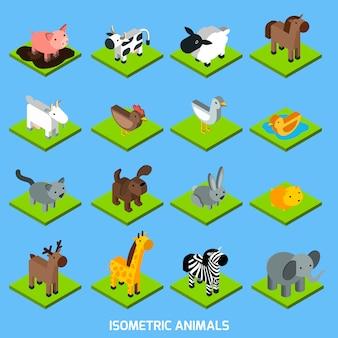 Zestaw zwierząt izometryczny