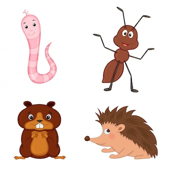 Zestaw zwierząt na białym tle. śliczne ilustracje zwierząt kreskówek