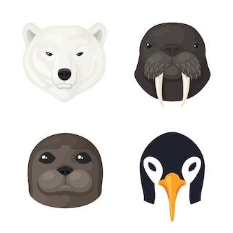 Zestaw zwierząt polarnych
