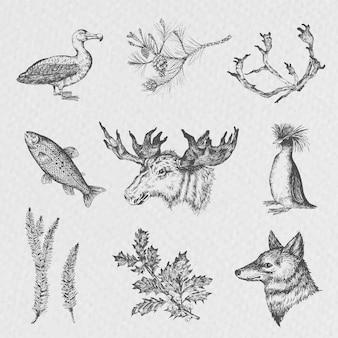 Zestaw zwierząt, styl szkicu