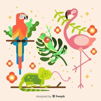 Zestaw zwierząt tropikalnych: papuga, żaba, flaming, kameleon. projekt płaski