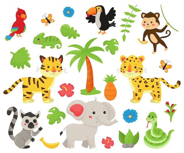 Zestaw zwierząt w dżungli i roślin tropikalnych.
