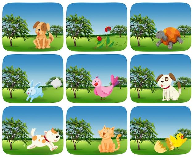 Zestaw zwierząt w plenerowej scenie