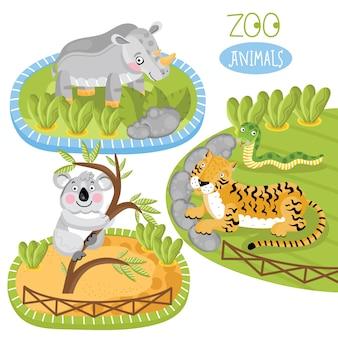 Zestaw zwierząt w zoo.