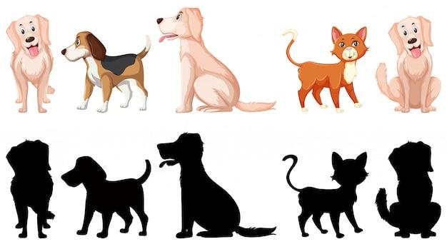 Zestaw zwierzęcy charakter
