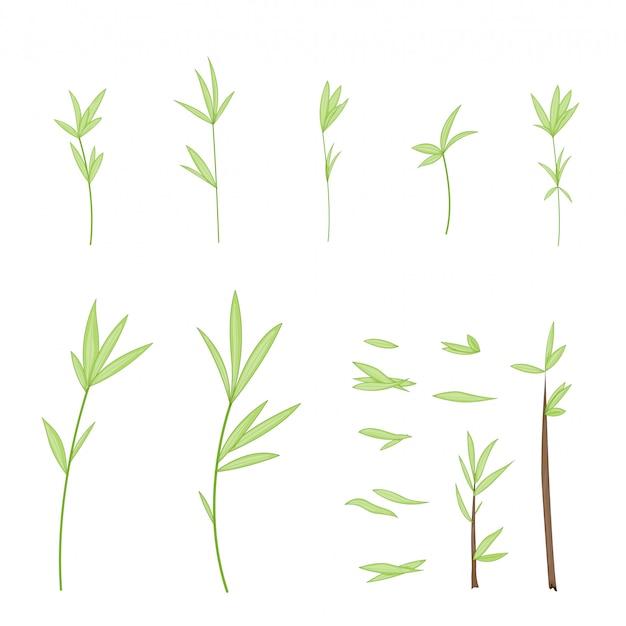 Zestawy gałązek z drzew z liśćmi