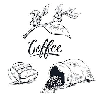 Ziarna kawy ręcznie pisanie ilustracji