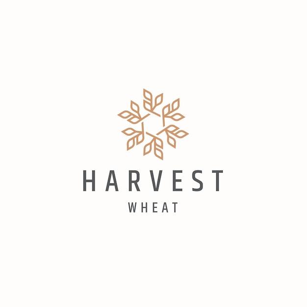 Ziarno pszenicy rolnictwo logo ikona szablon projektu płaskie wektor