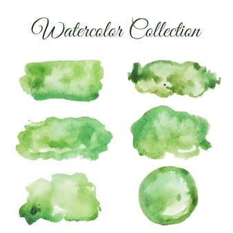 Zielona ilustracja akwarela rozchlapać