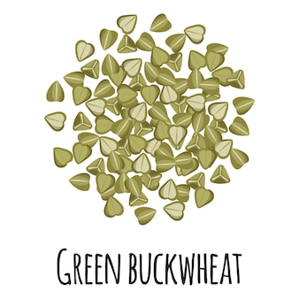 Zielona kasza gryczana do projektowania, etykietowania i pakowania szablonu rolnika. ekologiczna super żywność z naturalnego białka energetycznego. ilustracja kreskówka na białym tle wektor.