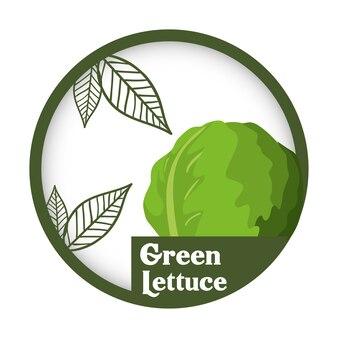 Zielona sałata warzywna świeża zdrowa etykietka