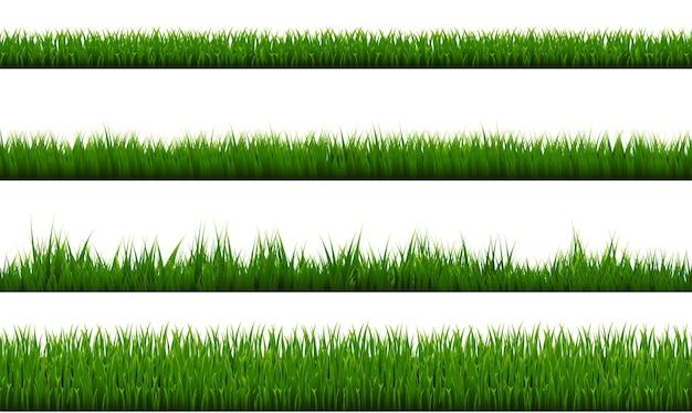 Zielona trawa granicy białym tle