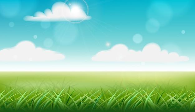 Zielona trawa i niebieskie niebo z chmurami