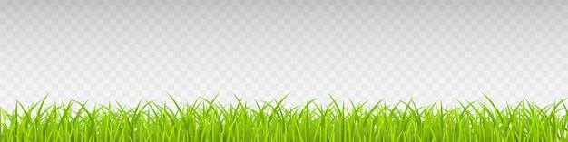 Zielona trawa realistyczna. wiosenna trawa, pole, natura eko.