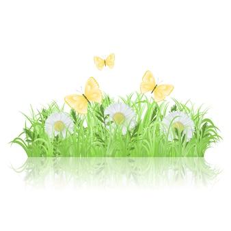 Zielona trawa z białymi kwiatami i motylami