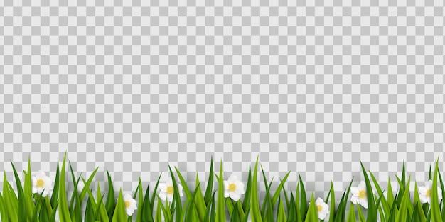 Zielona trawa z kwiatami
