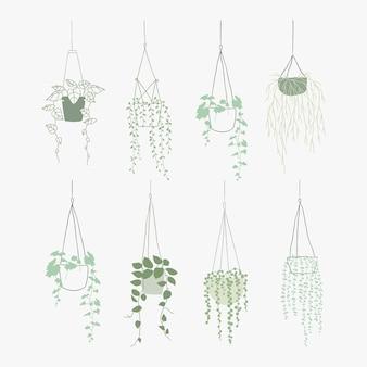 Zielona wisząca roślina wektor zestaw stylu doodle