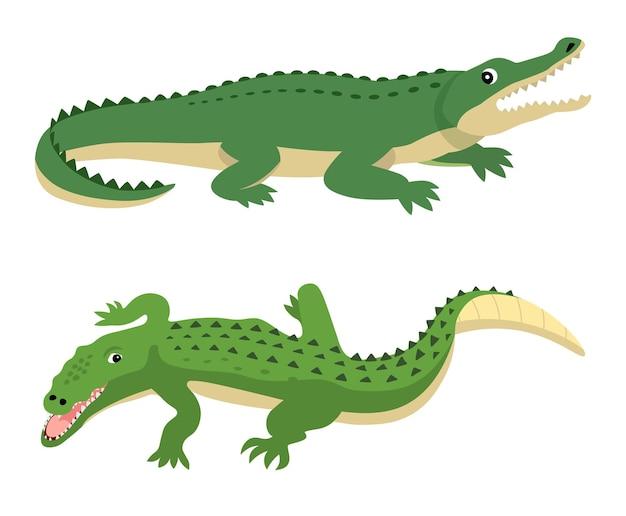 Zielone aligatory ustawić wektor dzikich zwierząt na białym tle