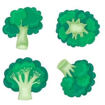 Zielone brokuły w nowoczesnym stylu płaski. zdrowa dieta. ikona na białym tle.